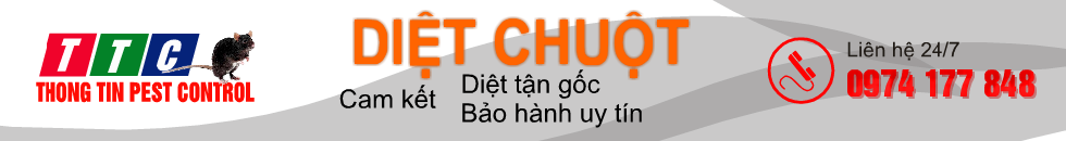 diet-chuot-banner-980-o
